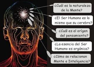 Neurociencias y responsabilidad penal