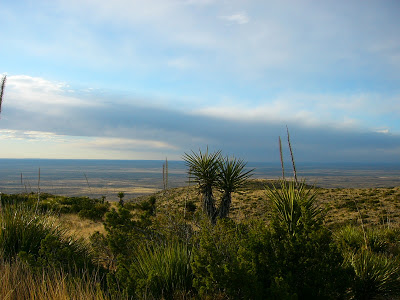 Outside Carlsbad caverns entrance