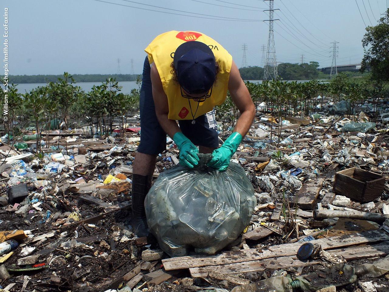 Voluntário do Instituto Ecofaxina coletando resíduos em manguezal de Santos