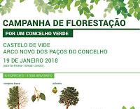 CASTELO DE VIDE: CAMPANHA DE FLORESTAÇÃO