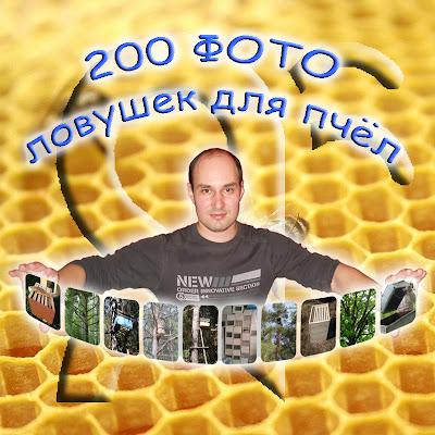 200 фото ловушек для пчёл