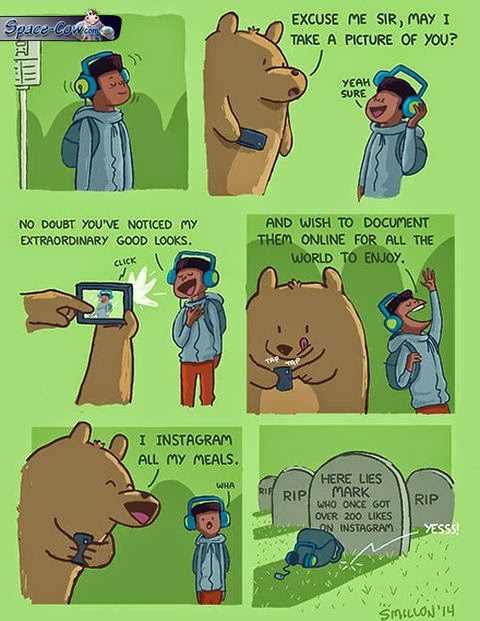 funny comics bear picture