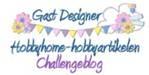 Guestdesigner voor de maand januari 2013