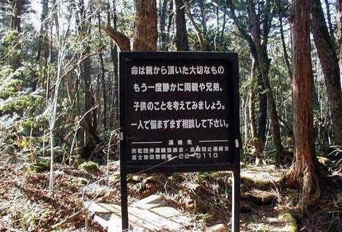 Hutan Paling Menyeramkan di Jepun