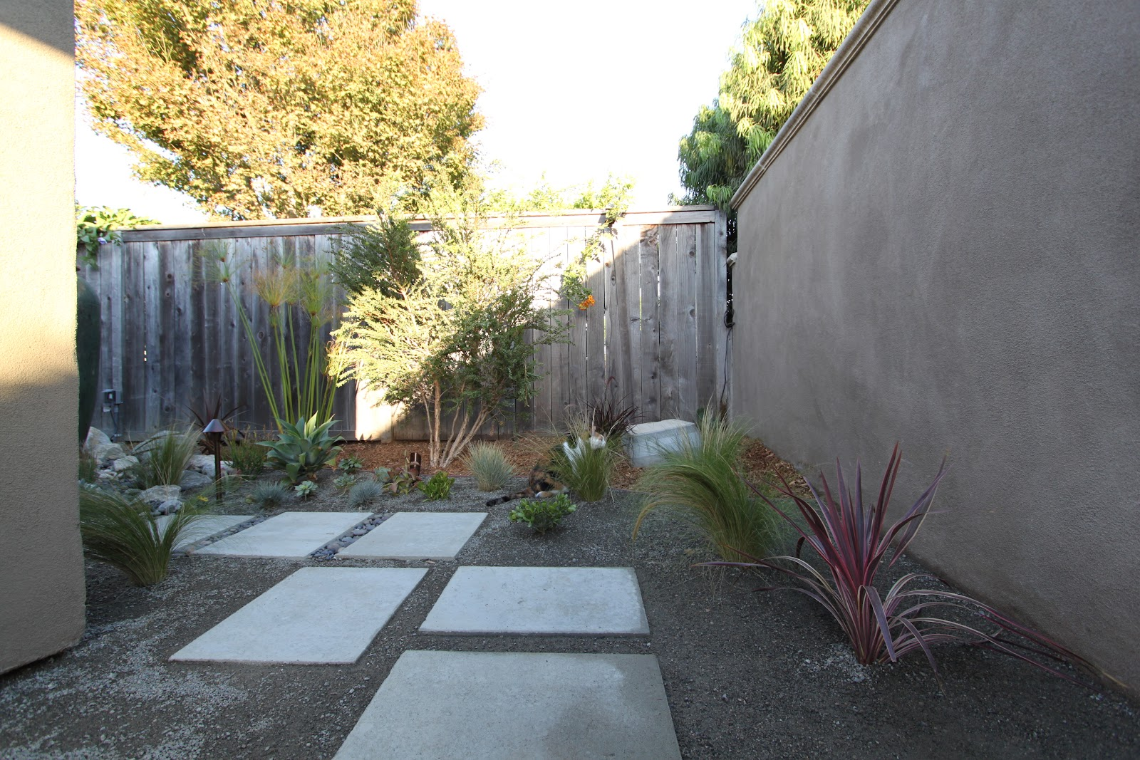 Landscaping a mid century modern home mid century modern for Garden design around house