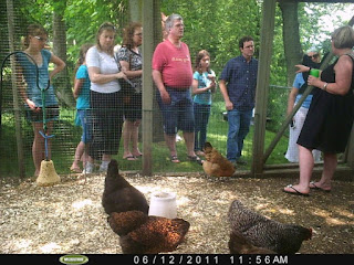 Guests for the Chicken Coop Tour gather to hear a chicken-keeper talk