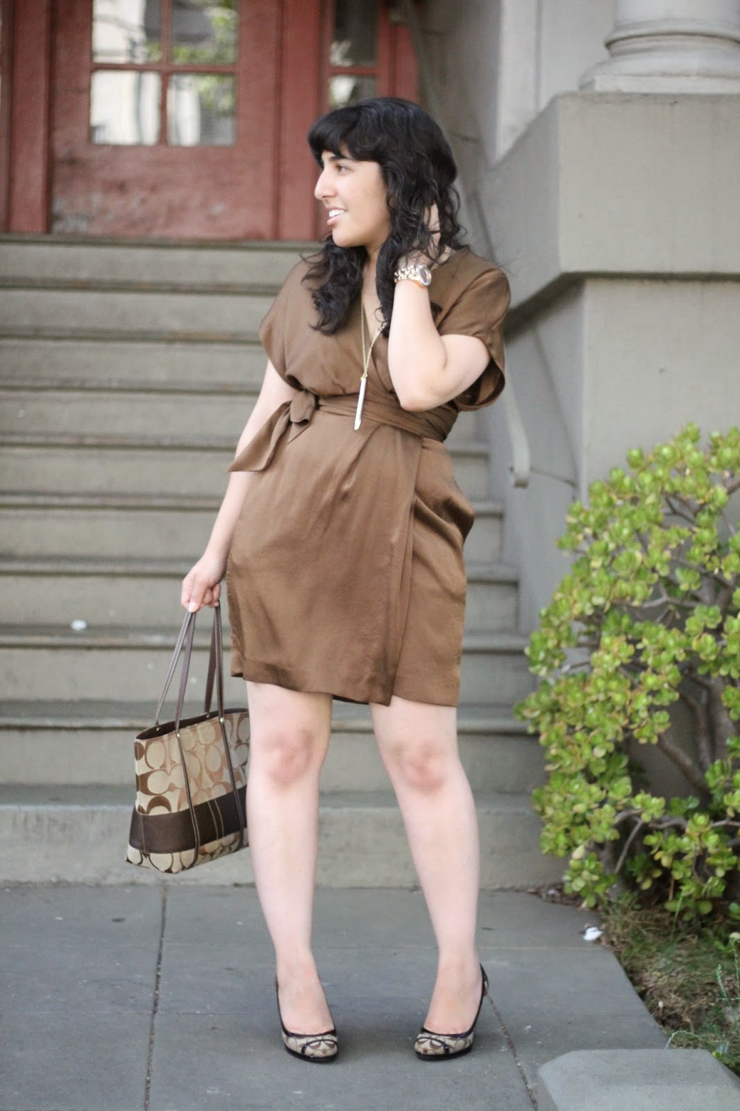 Diane von Fursteneberg Brown Wrap Dress