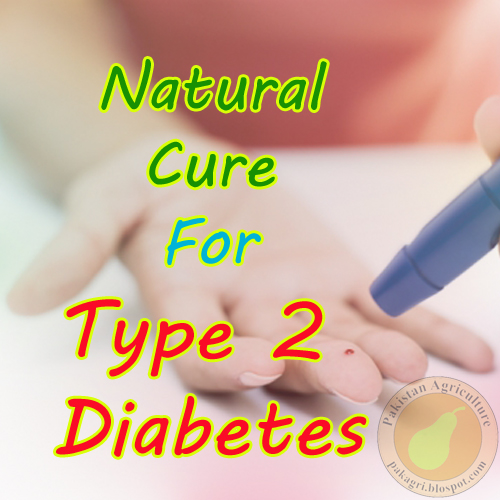 The cure for diabetes 2