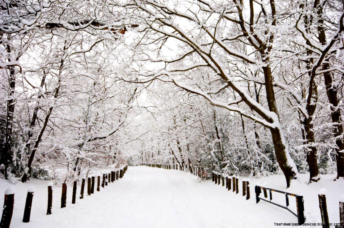 winter season snow road hd wallpaper desktop free high