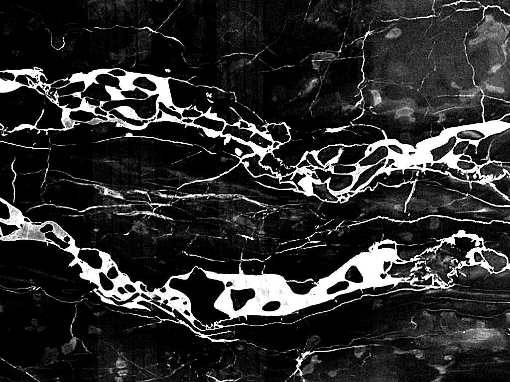 Zoom dise o y fotografia texturas de m rmol for Definicion de marmol