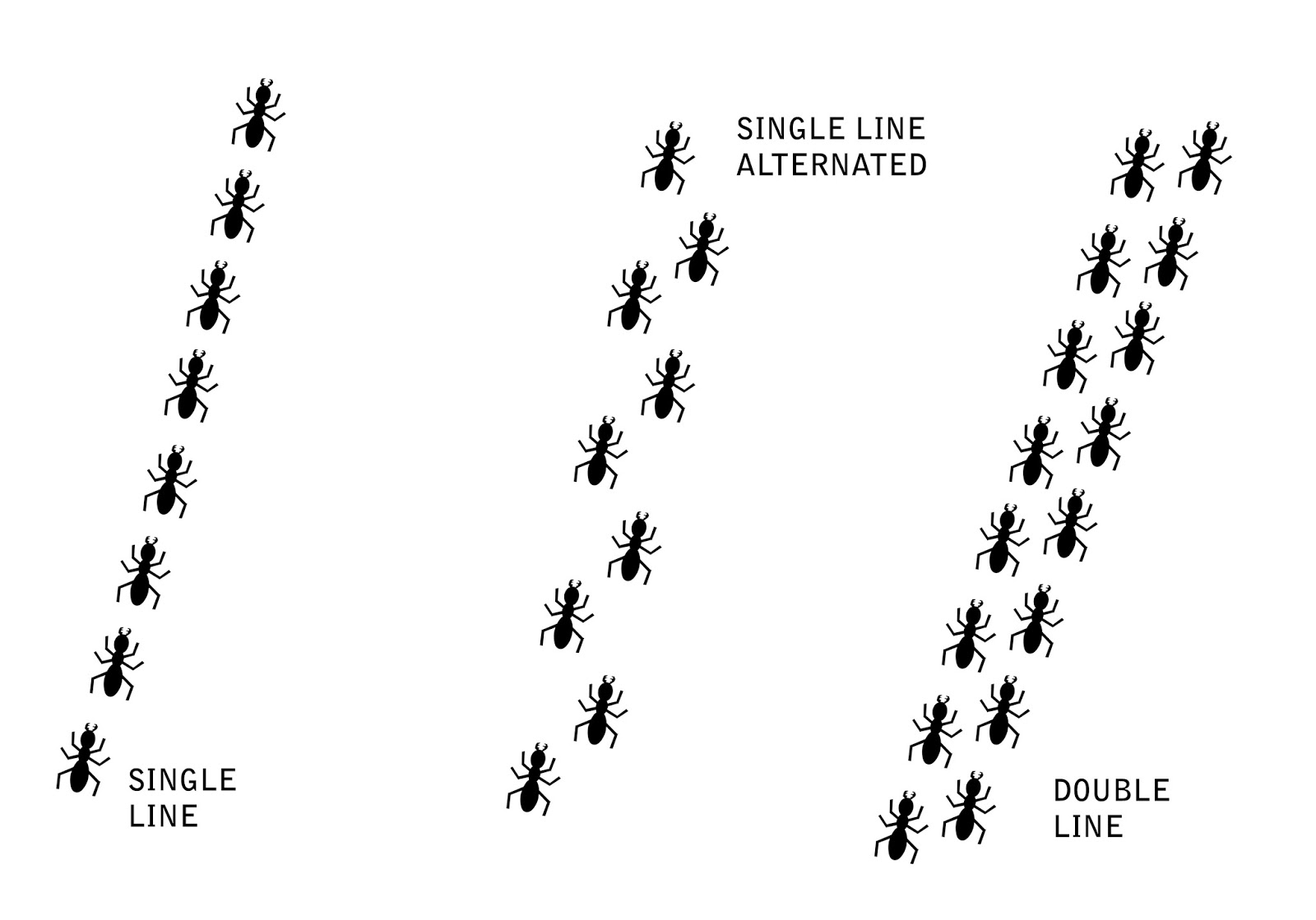 Walking In A Straight Line Clipart : Shincheonji shines so brightly bible the