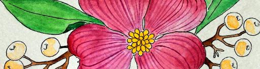 The Opulent Poppy