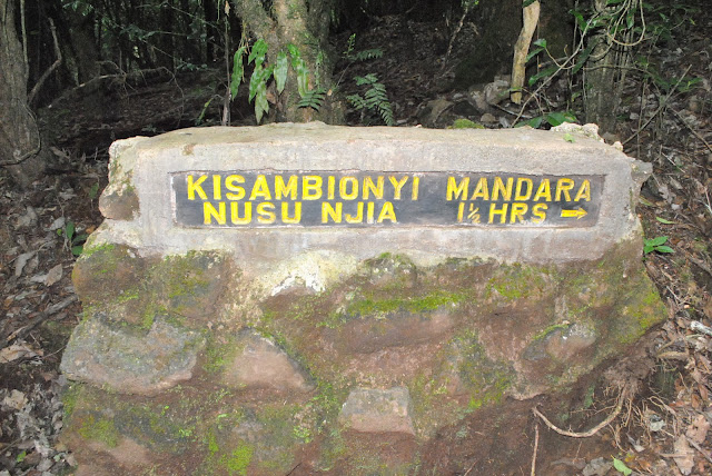 Marangu gate to Mandara hut