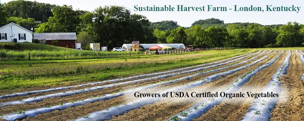 Sustainable Harvest Farm