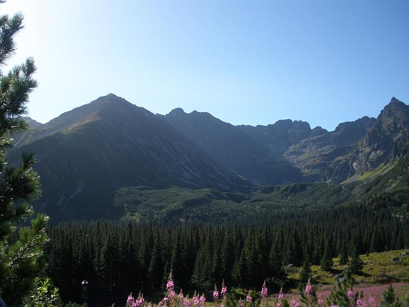 Dolina Czarna Gąsienicowa.