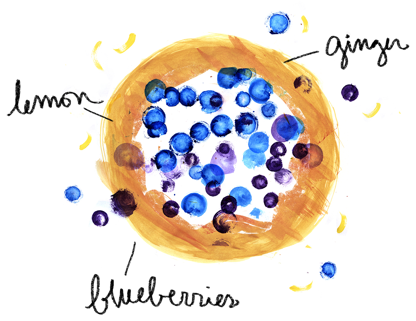 blueberry galette recipe lauren monaco illustration