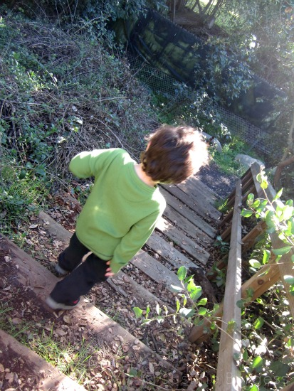 boy at Environmental Nature Center, newport beach