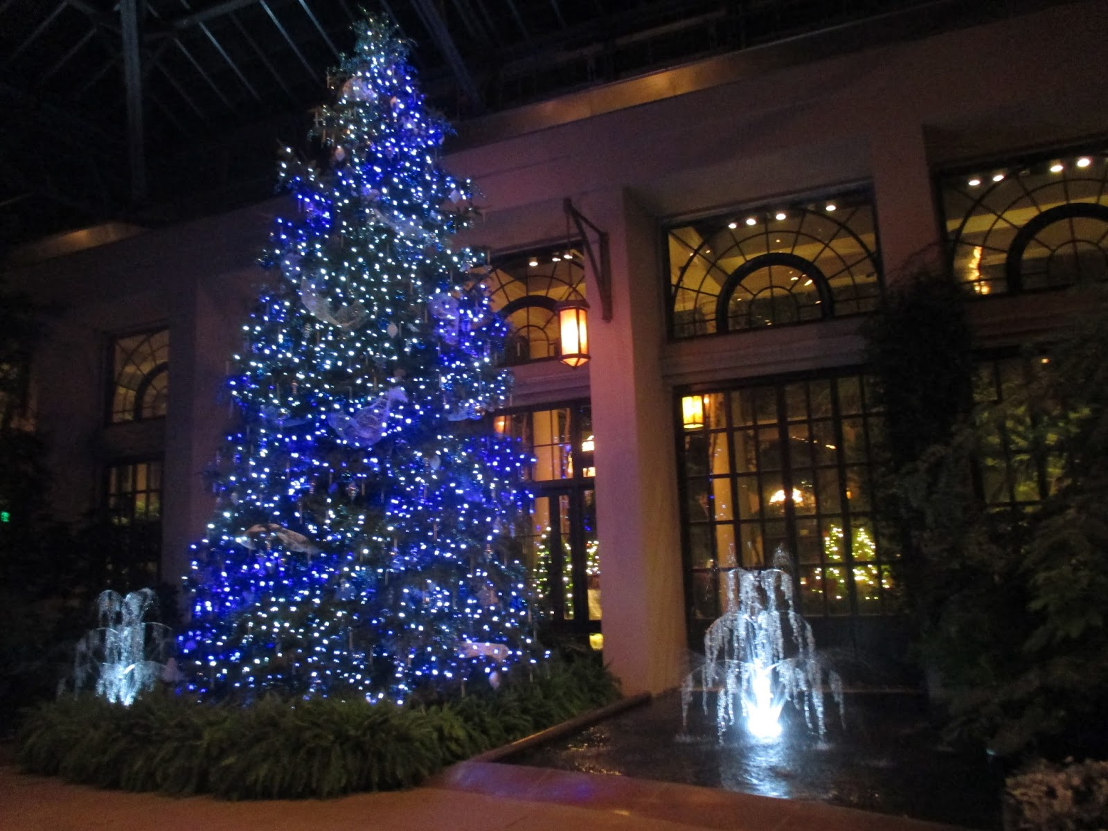Garden Dream: Fantastic Illuminations at Longwood Gardens ...