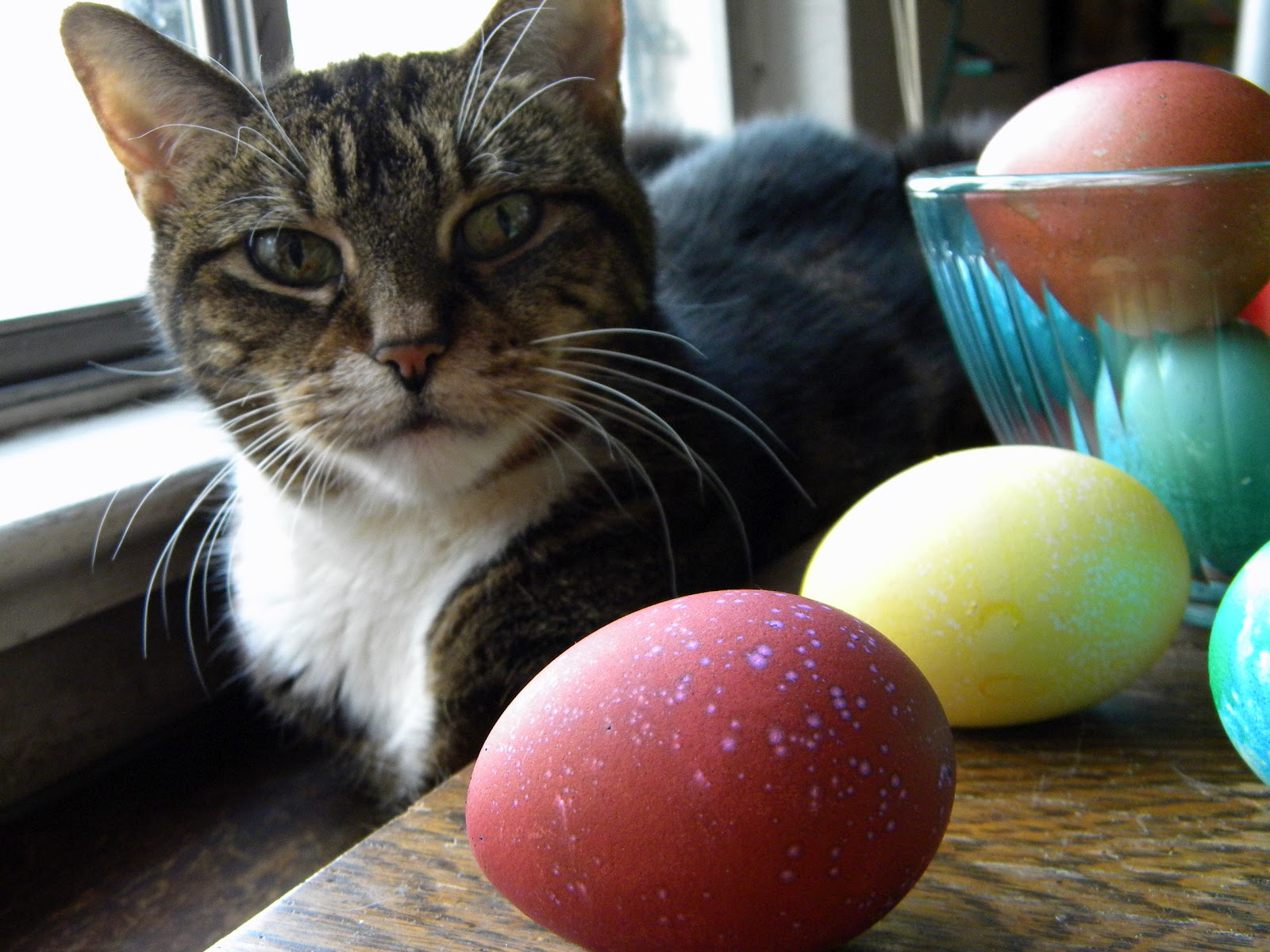 mystery lovers kitchen easter recipes roundup cat