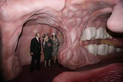اغرب متحف , متحف لتفاصيل جسم الانسان 3