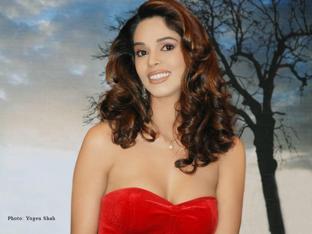 mallika sherawat hot sexy bollywood girl wallpaper ~ stock foto hot