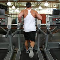 Lari Treadmill