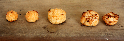 Perfect Coconut Macaroon Cookies - Naturally Sweetened, Gluten Free, Grain Free, Paleo Recipe  from FoyUpdate.blogspot.com