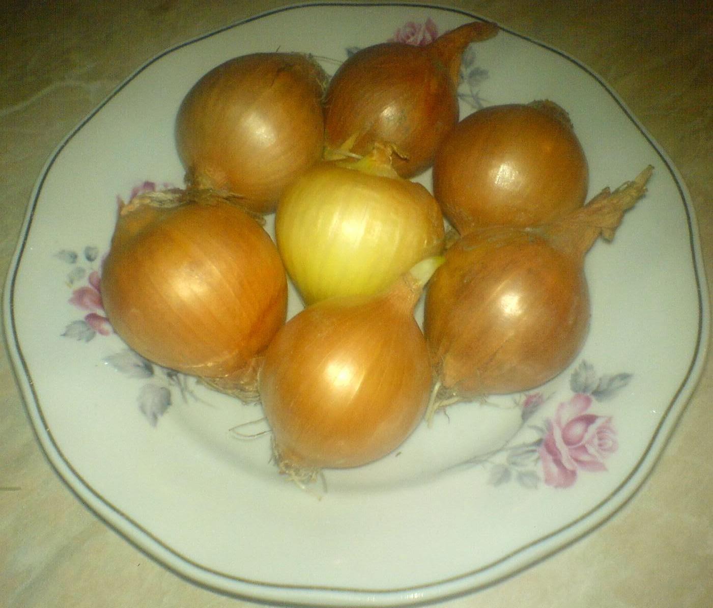 ceapa galbena, retete cu ceapa, preparate din ceapa, ceapa romaneasca, ceapa galbena pentru siropul de ceapa contra tusei,