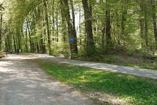 Bild 14: Hügel in der Grabhügelgruppe Höllriegelskreuth/Pullach