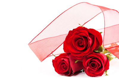 Rosas rojas para el Día del Amor