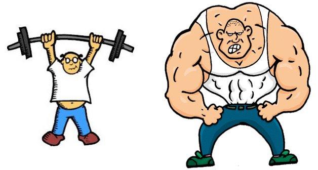 Dieta para ganhar musculos rapido