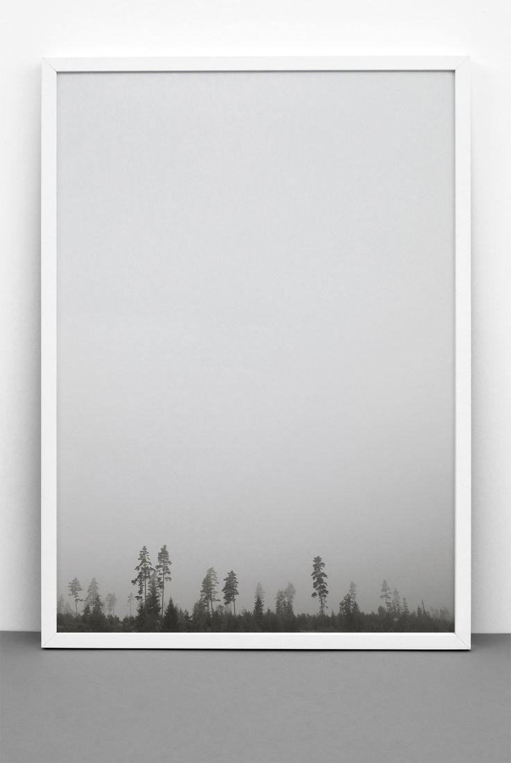 fotoprint af en diset skov