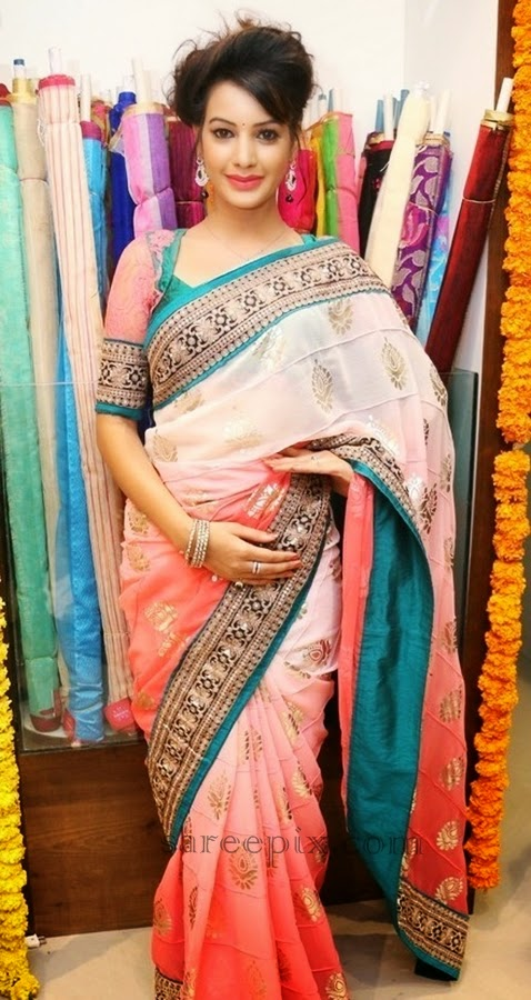 Model Deeksha seth beautiful look in saree