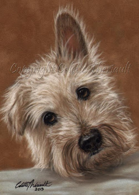 Wire Haired Jack Russell Terrier Portrait painting in pastel by Colette Theriault