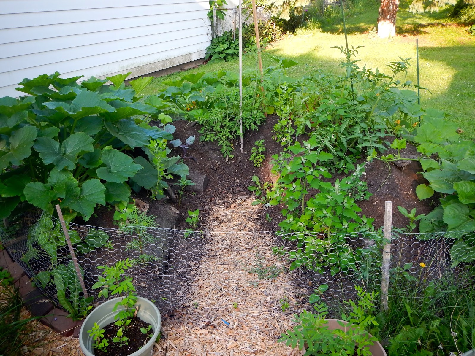 Day By Day Homesteading The Art Of Creating Resiliency