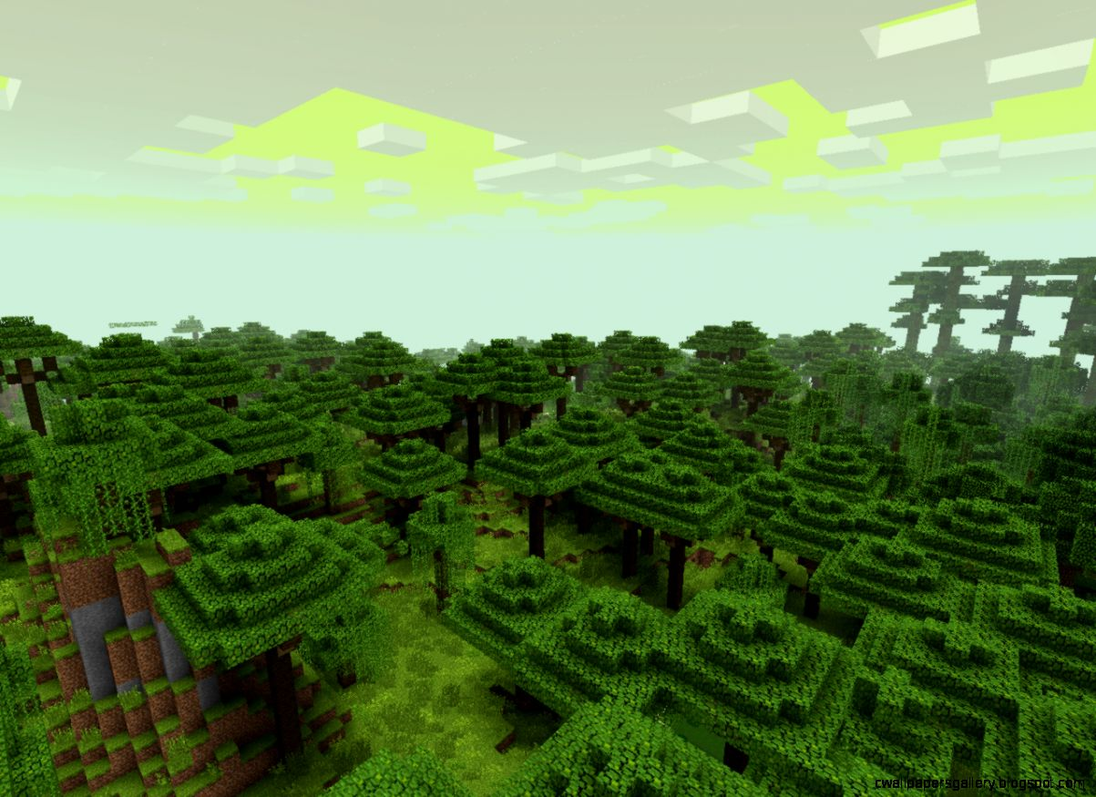 Tropical Rainforest   Biomes O Plenty Wiki   Wikia