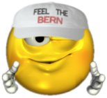 Feel the Bern!