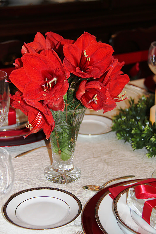 Stranded in cleveland christmas table d cor amaryllis for Amaryllis christmas decoration
