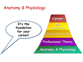 Download free slides, including this one, to use in your A&P course