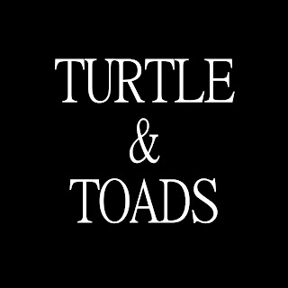 turtle and toads rock metal marseille