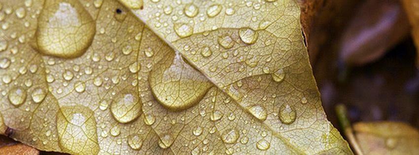 Couverture facebook pluie de novembre 01