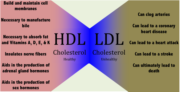 hdl and ldl The standard lipid profile, as recommended by the adult treatment panel iii (atp iii), consists of direct measurement of total cholesterol, hdl-c, and triglycerides, with a calculated ldl-c, obtained after a 9-hour to 12-hour fast.