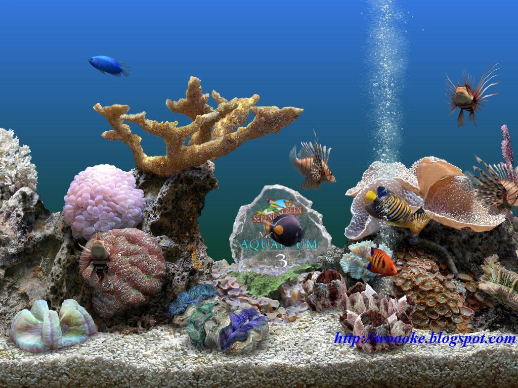 Download Wallpaper Aquarium 3d Bergerak Images Hewan Lucu