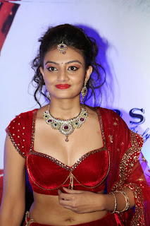 Actress Nikitha Narayan Latest  Pictures in Designer Dress at Fashionology Fashion Show 2013 0006.jpg