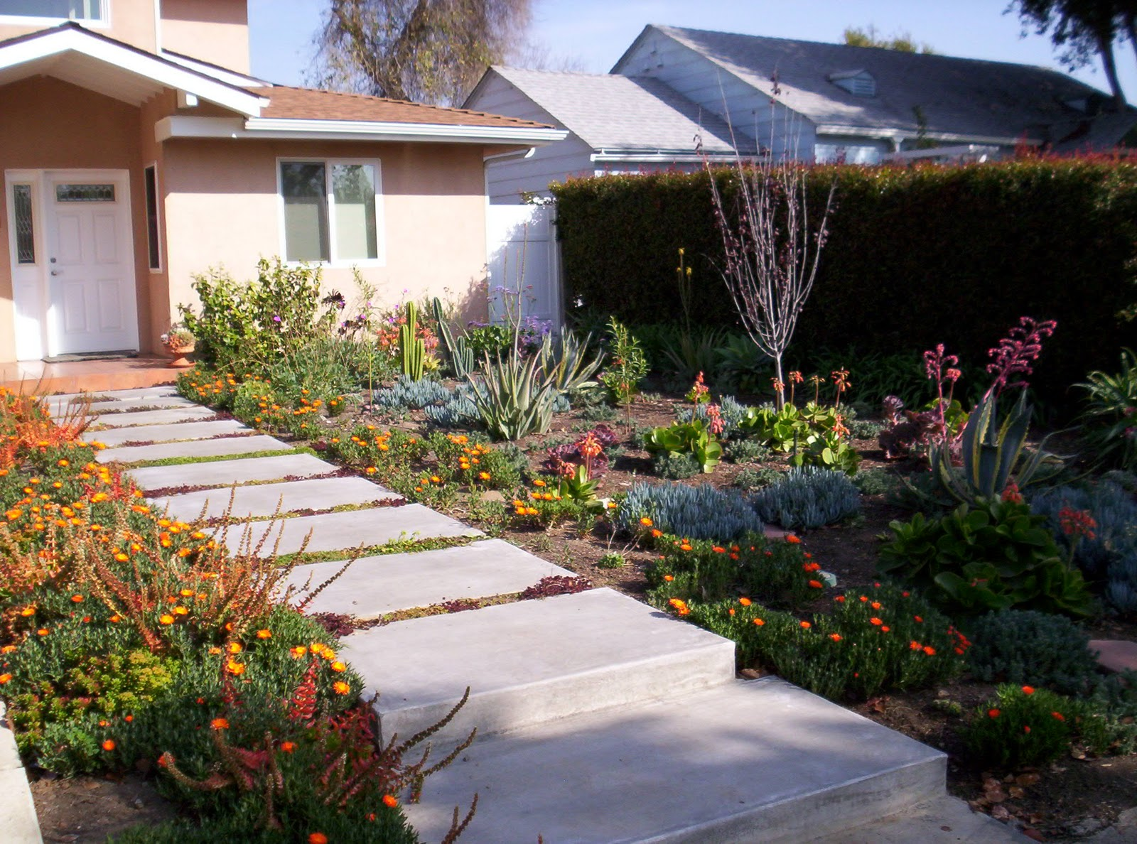 Mar Vista Green Garden Showcase January 2012