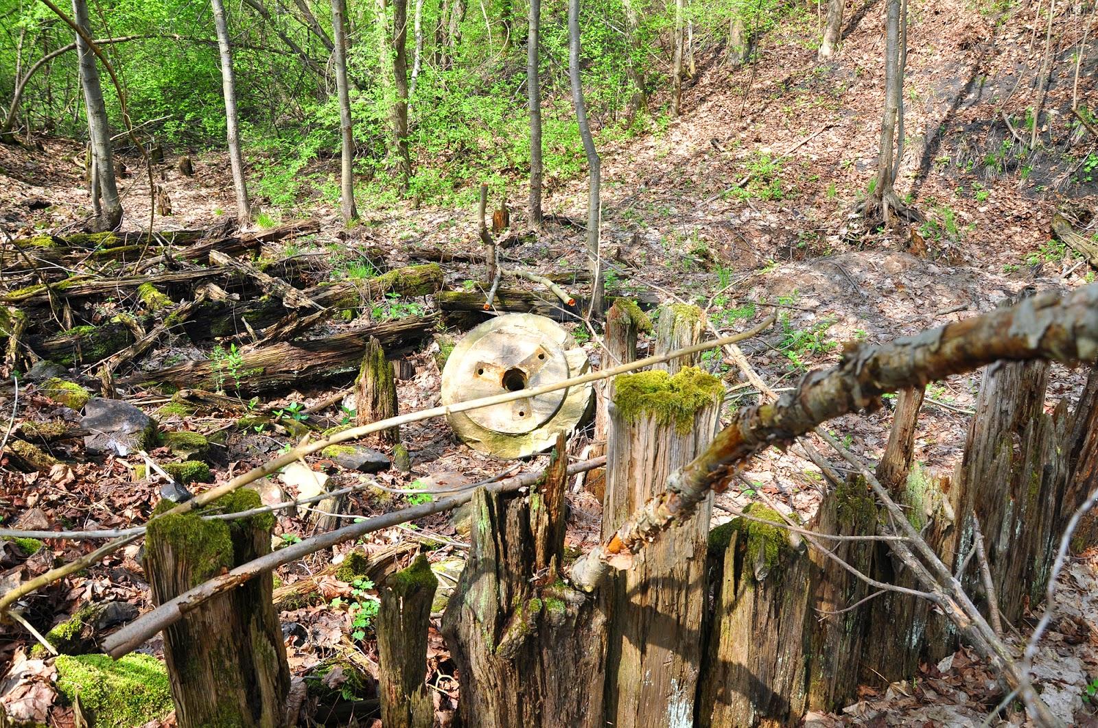 Małachów, zachowane szczątki młyna - widoczny szkielet fundamentów i koła młyńskie. Foto. KW.
