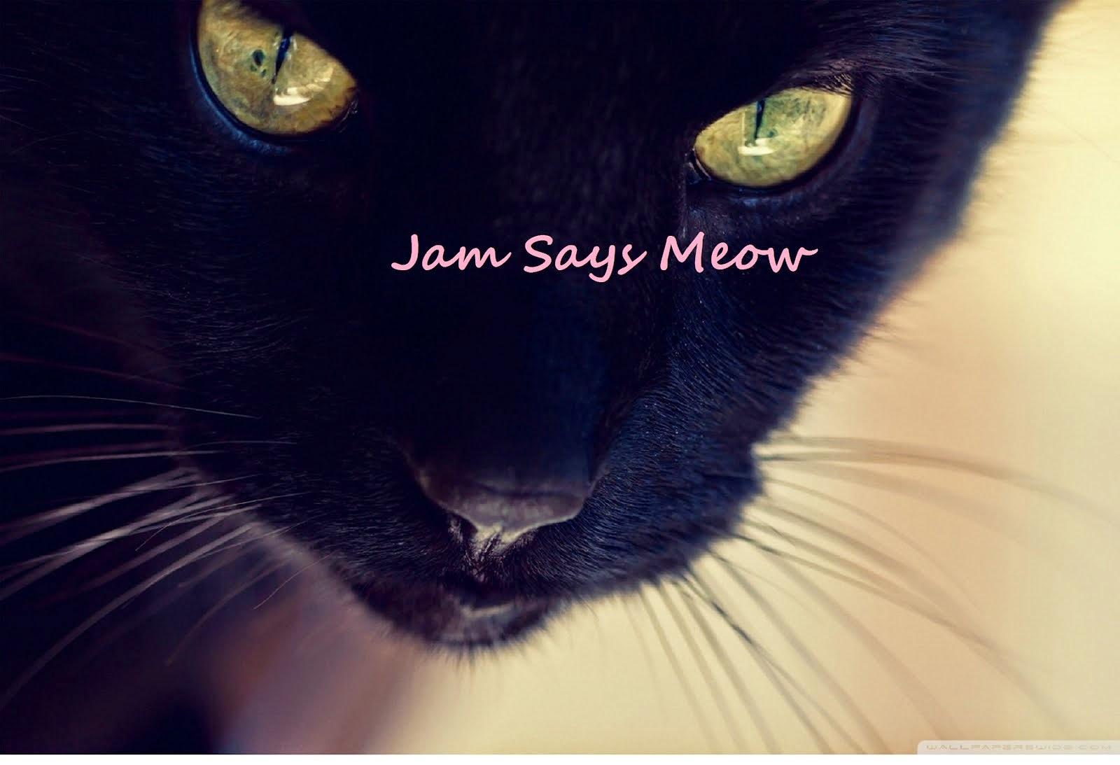 Jam Says Meow