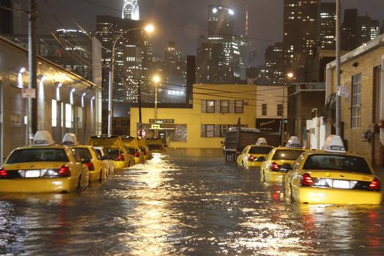 Where is Sandy?