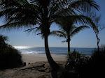 Praia dos Algodoes