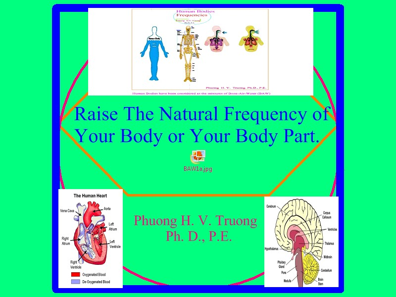 Raise The Natural Frequency of Your Body